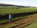 我在肯亞的跑步旅行(上)