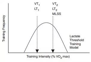 ▲ 訓練強度分佈的金字塔模型