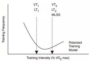 ▲ 訓練強度分佈的兩極化模型