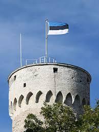 愛沙尼亞國旗。