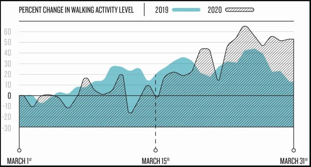 走路活動。(圖 8)