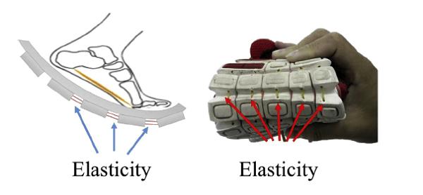 鞋體彈性設計 圖片來源: Human Movement Science, 38, 163-172.