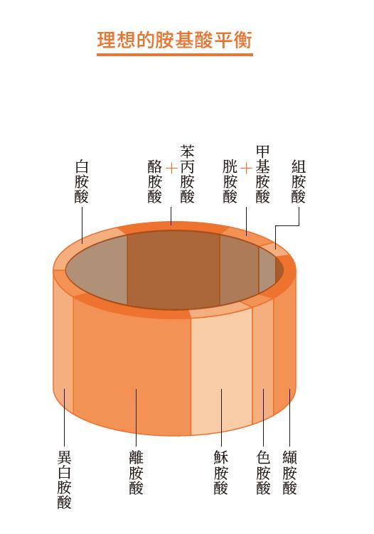 常用來說明胺基酸分數的「水桶理論」。桶子的每塊板子的長度都是相對於各胺基酸相對於基準值的比例,而桶子裡蓄的水就是胺基酸分數。